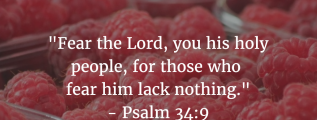 Psalm 34:9: Fear the Lord, you his holy people, for those who fear him lack nothing.