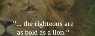 Proverbs 28:1 - Bold as a lion - Bible