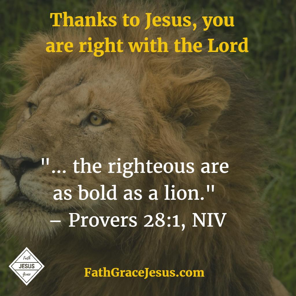 Proverbs 28:1 - Bold as a lion - Bible