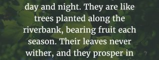 Psalm 1:2-3