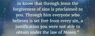 "Acts 13:38-39: ""Therefore, my friends, I want you to know that through Jesus the forgiveness of sins is proclaimed to you. Through him everyone who believes is set free from every sin, a justification you were not able to obtain under the law of Moses."" (NIV)"