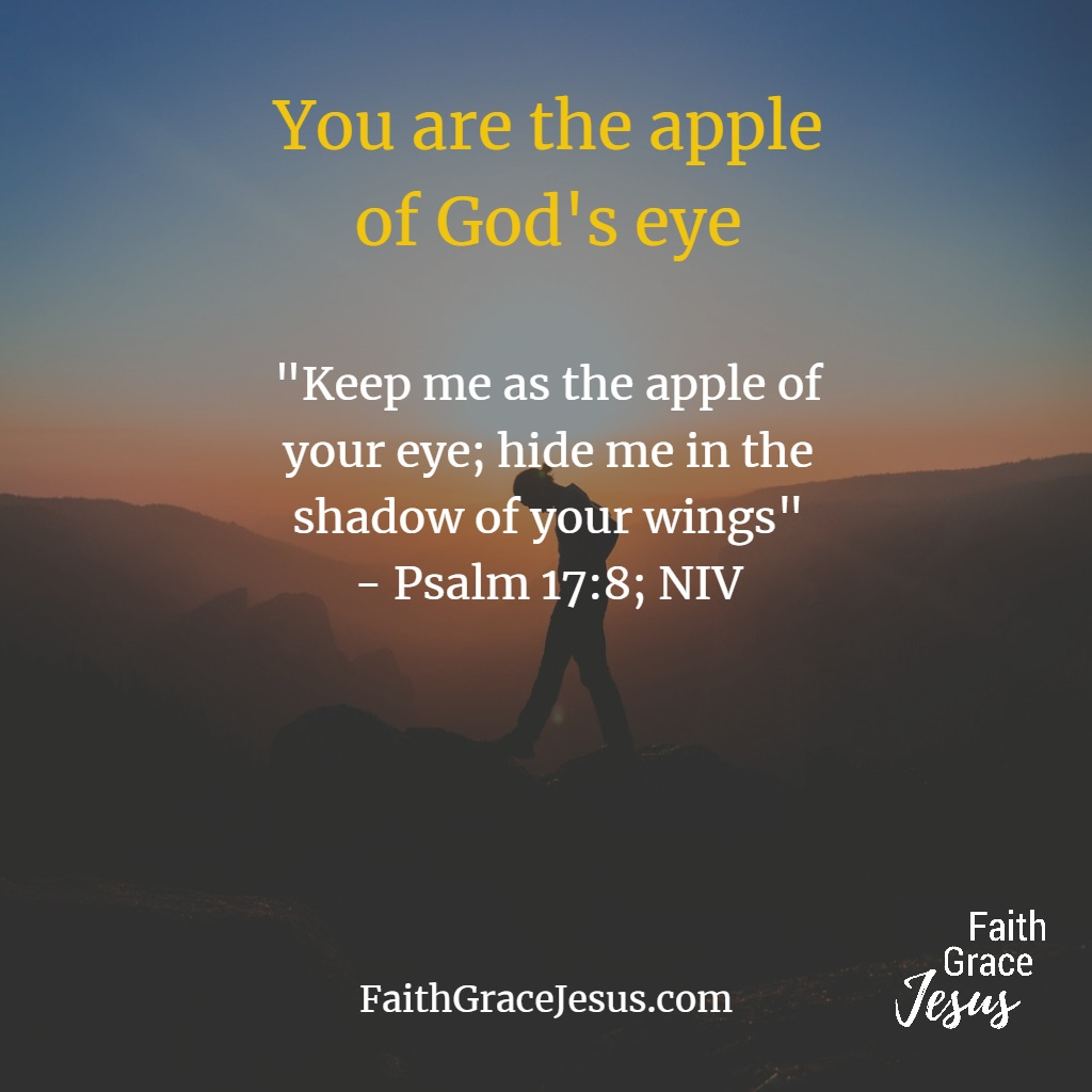 Psalm 17:8 - You are the apple of God's eye