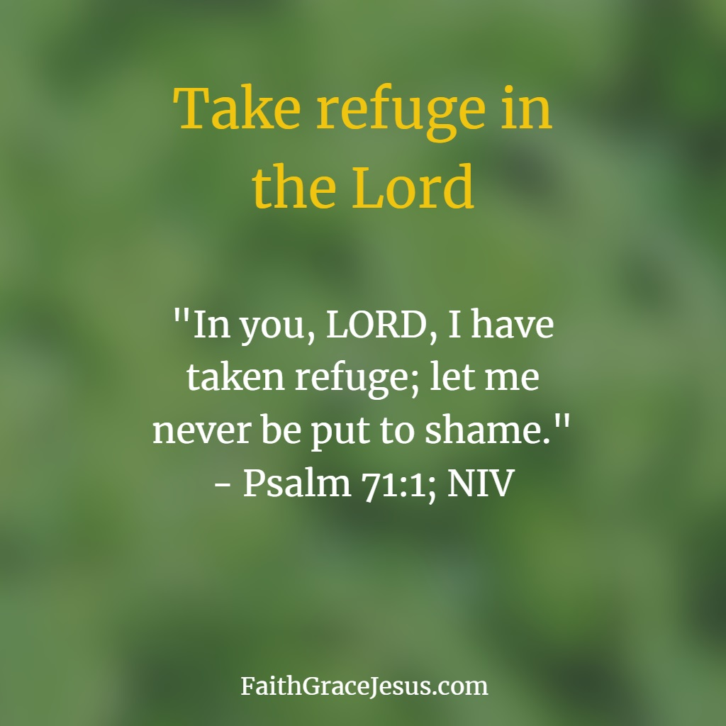 Psalm 71:1 (NIV) - Take refuge in the Lord