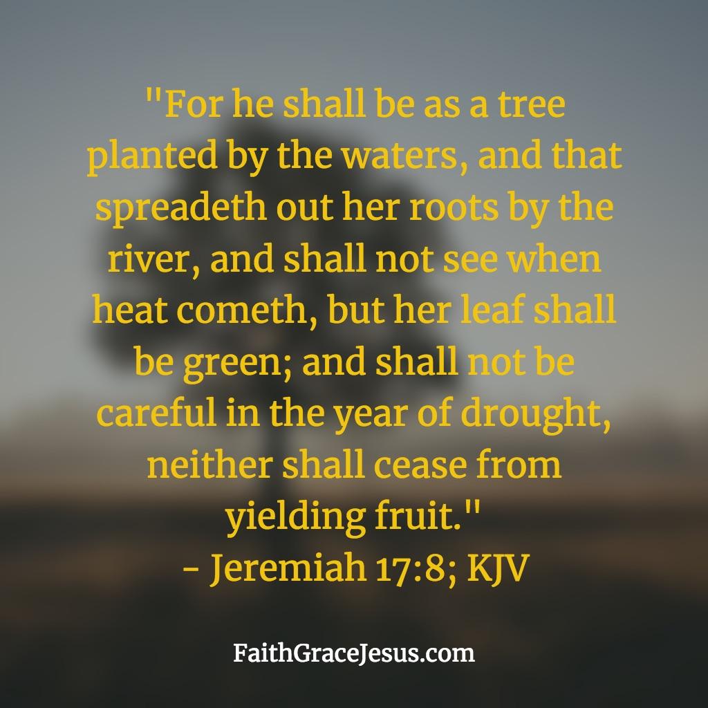 Jeremiah 17:8 (KJV)