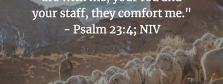 Psalm 23:4 - The Shepherd's Rod and Staff