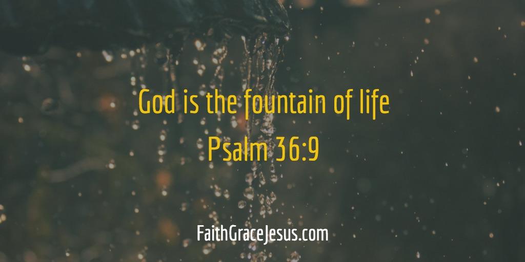 Psalm 36:9 (NLT)