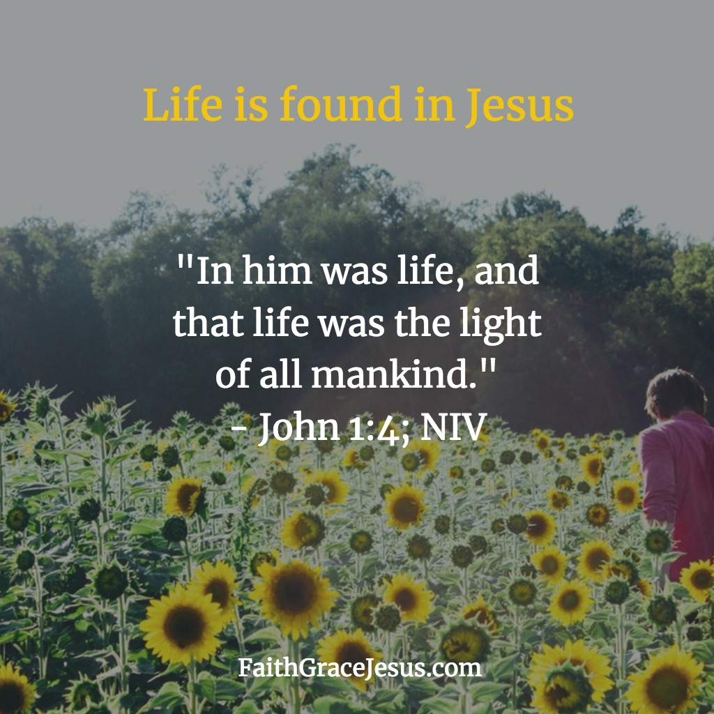 John 1:4 (NIV) - Life is found in Jesus