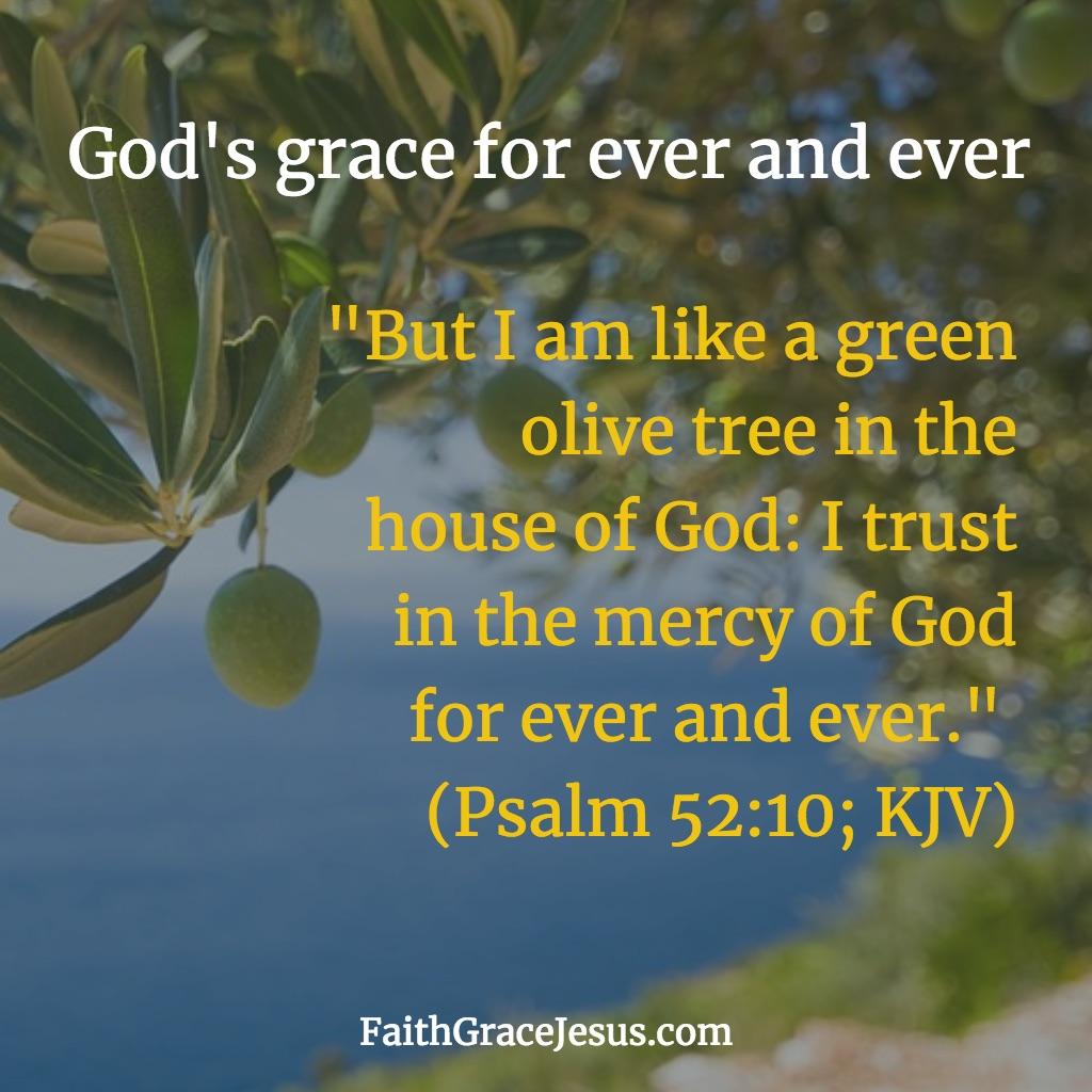 Psalm 52:10 (KJV)