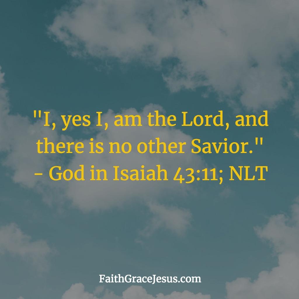 Isaiah 43:11 (NLT)
