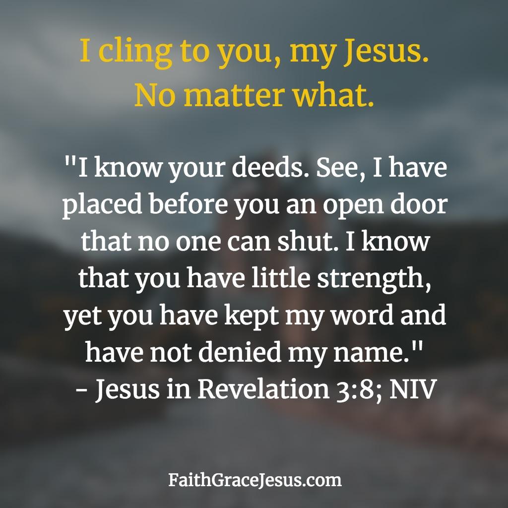 Revelation 3:8 (NIV)