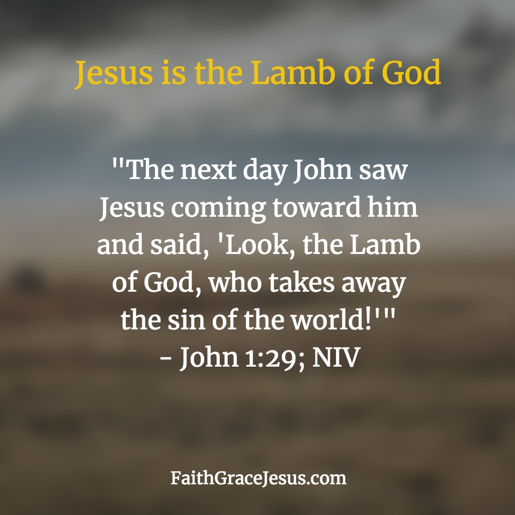 Lamb of God - John 1:29 (NIV)