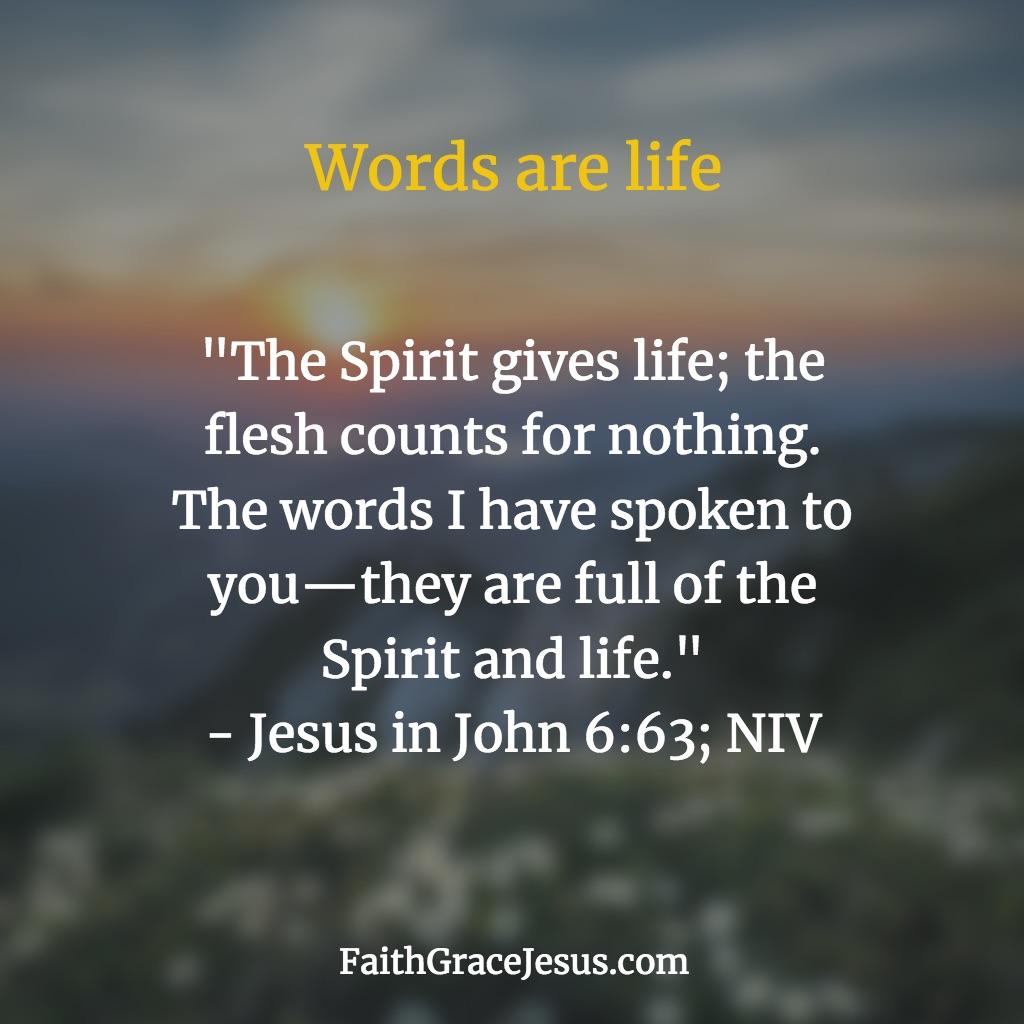 Jesus in John 6:63 (NIV)