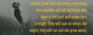 Isaiah 40:29-31; NIV