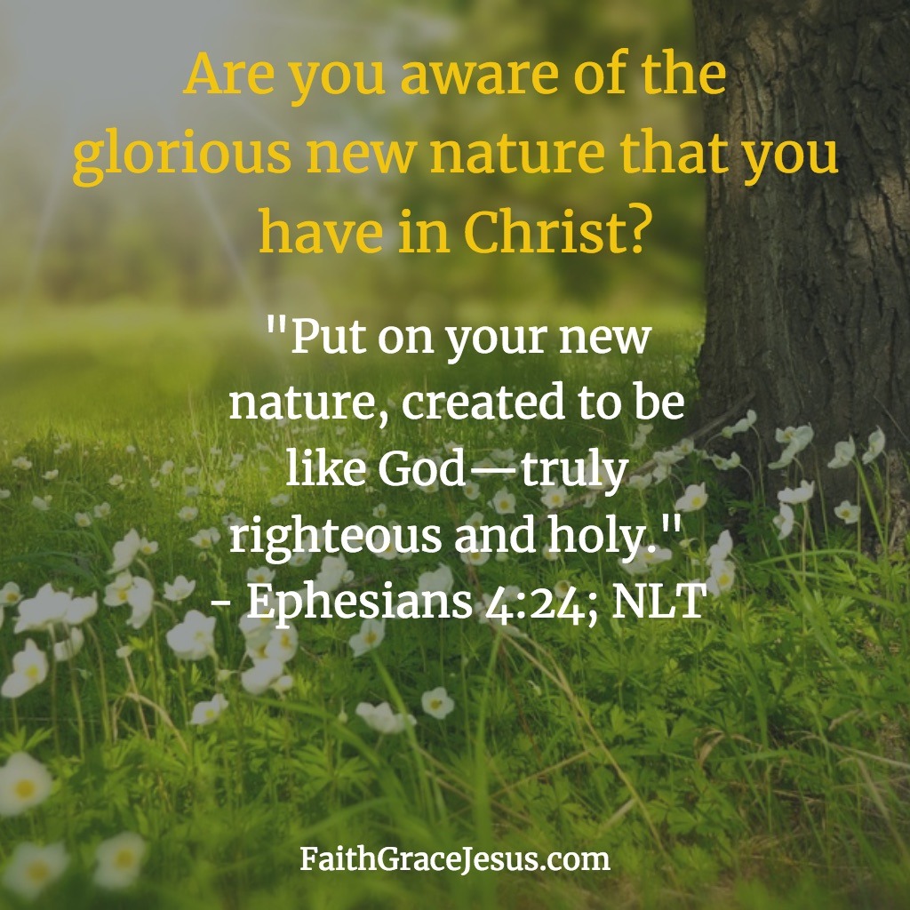 Ephesians 4:24 - The New Nature