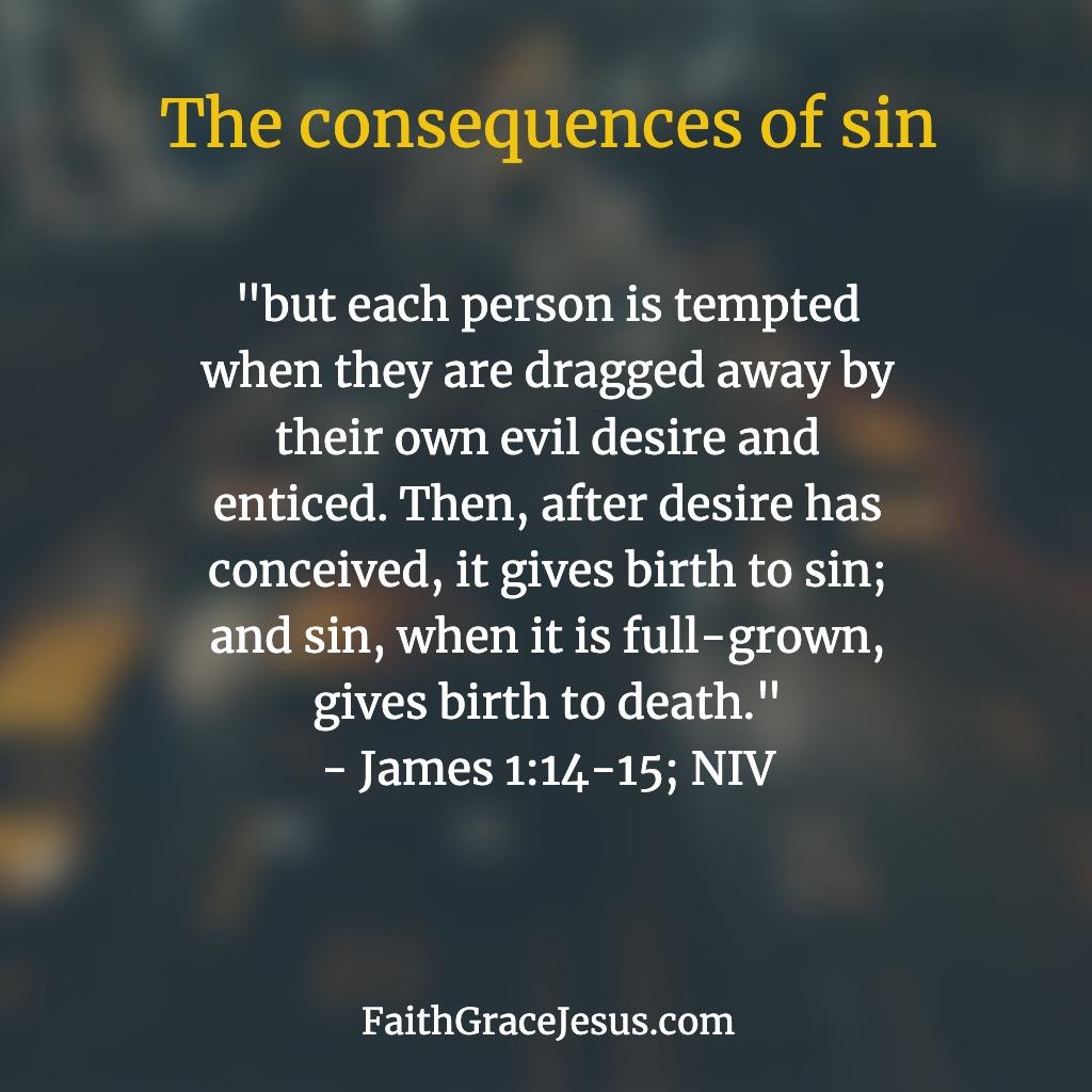 James 1:14-15 (NIV)