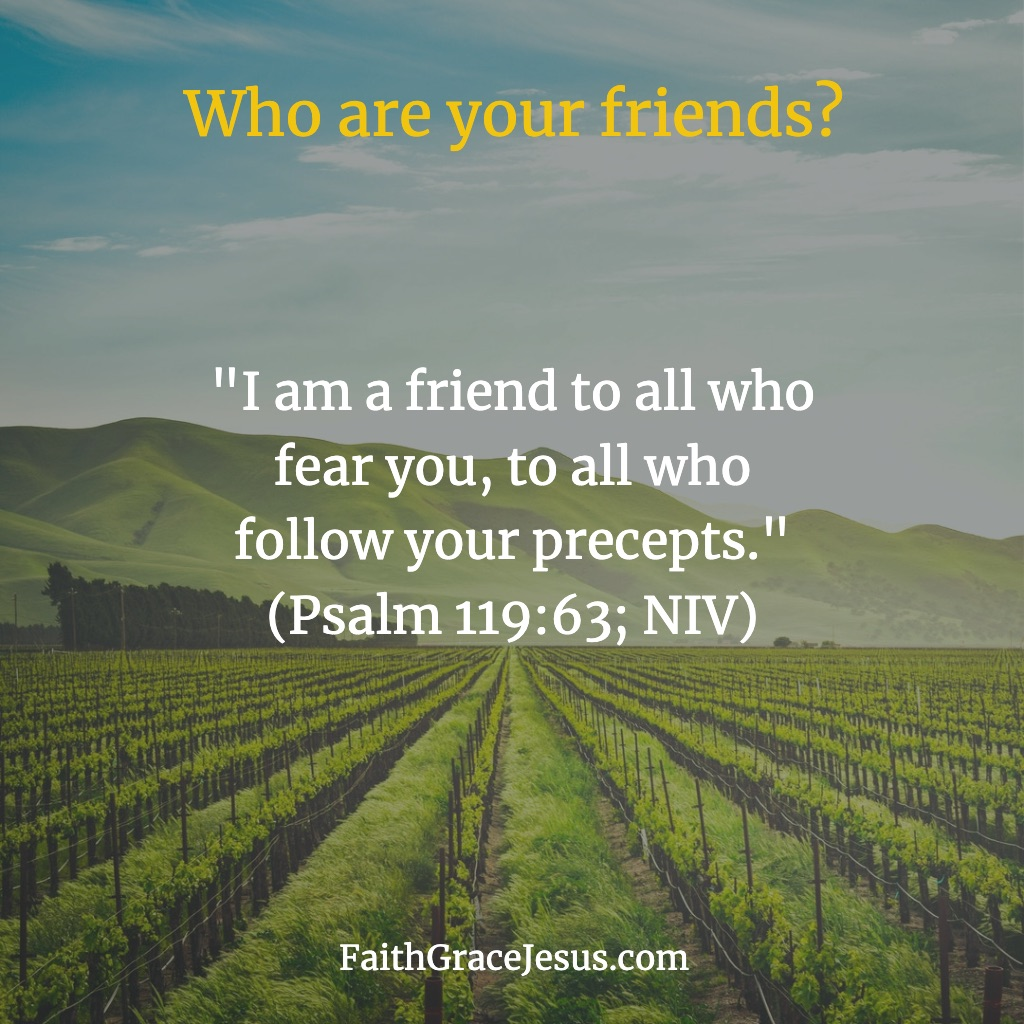 Psalm 119:63 (NIV)