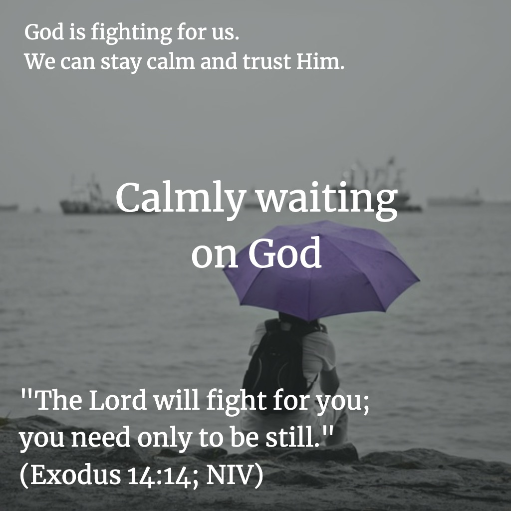 Calmly waiting on God - Exodus 14:14 (NIV)