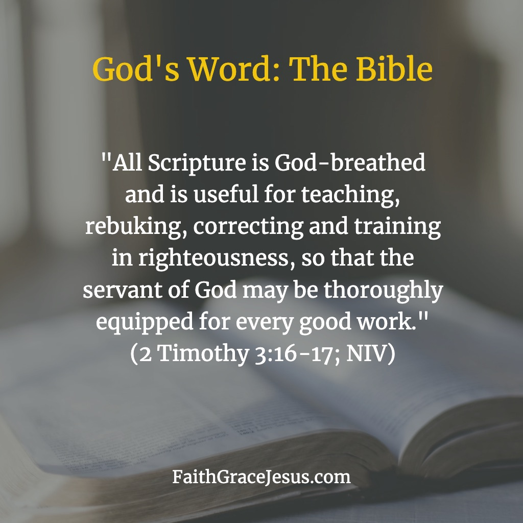 "2 Timothy 3:16-17: ""All Scripture is God-breathed and is useful for teaching, rebuking, correcting and training in righteousness, so that the servant of God may be thoroughly equipped for every good work."""