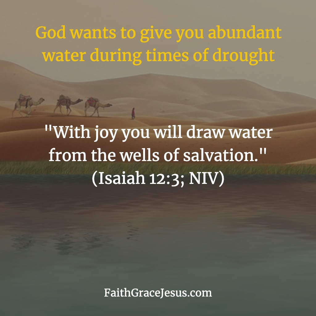 Isaiah 12:3 (NIV)
